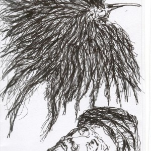 A tépett tollú / With Shredded Feathers (2003, toll, 10,5 cm x 14,5 cm)